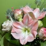 Bouquet regalo